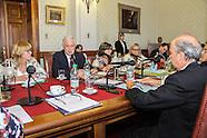 Min. Basso en comisión de Salud del Senado