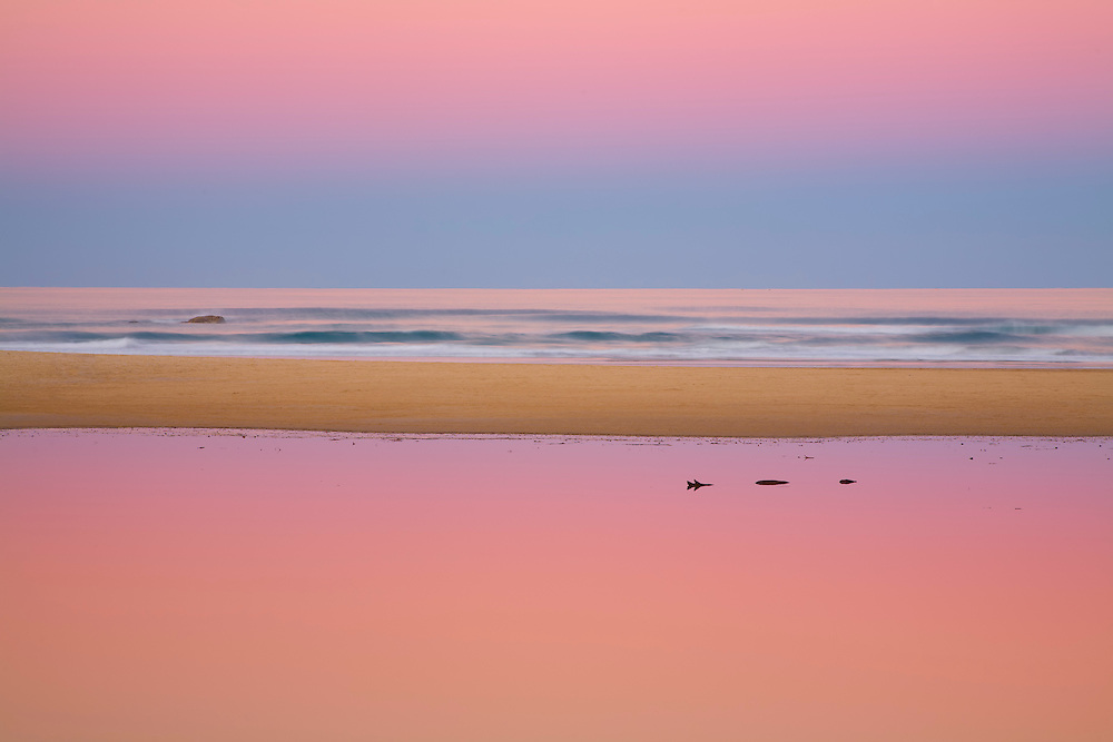 This is the end of Stumer's Creek. It only opens up to the sea when the creek floods. The contrast between the still water of the creek and the surf beyond along with the reflected pink of the sky make this an extremely pleasing image.