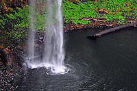 South Falls in Silver Falls State Park splashing down into its pool