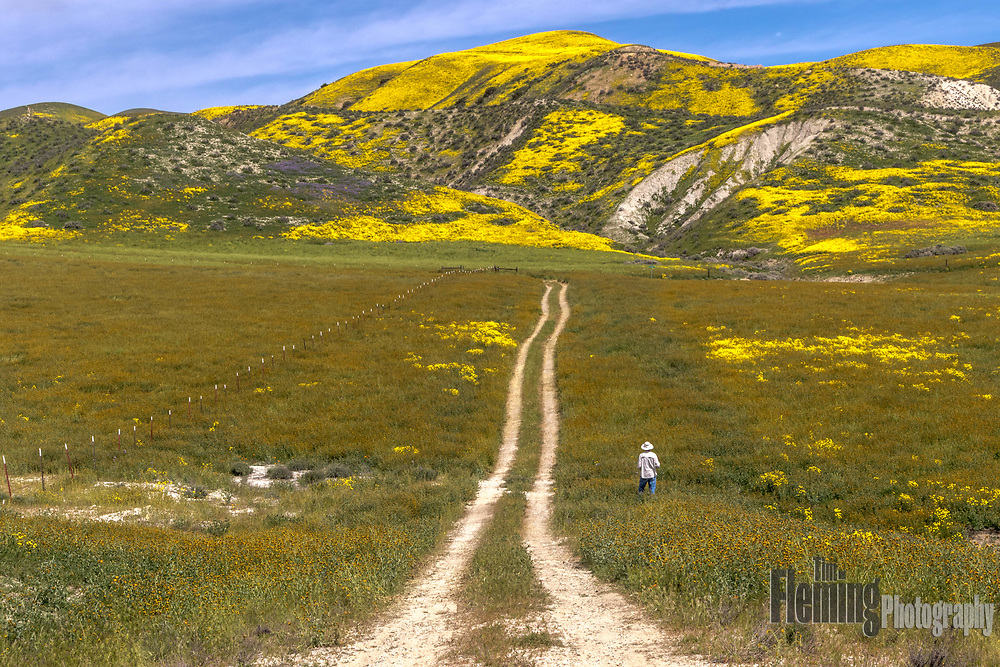 Carrizo Plain National Monument, California
