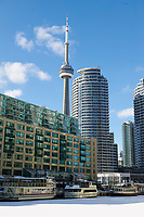 View of CN Tower and downtown Toronto, Harbourside, Toronto , Ontario, Canada