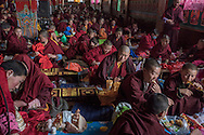 For a story by Ed Wong : CHINASICHUAN - Two journals in Sichuan<br /> Yarchen Gar, Sichuan, China<br /> October 11th, 2016<br /> Nuns gathered for a meal before a prayer/study session.<br /> Gilles Sabri&eacute; for The New York Times