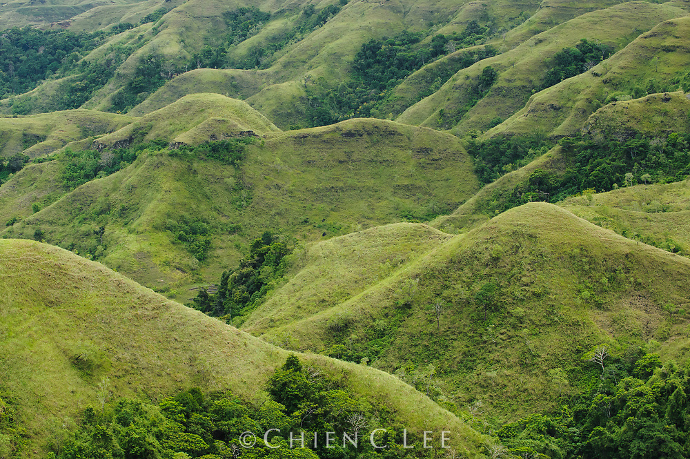 One of the most southerly islands in Indonesia, Sumba is subject to a seasonally dry climate.  The rugged terrain of the interior is composed largely of grassy highlands and steep forested valleys. East Nusa Tenggara, Indonesia.