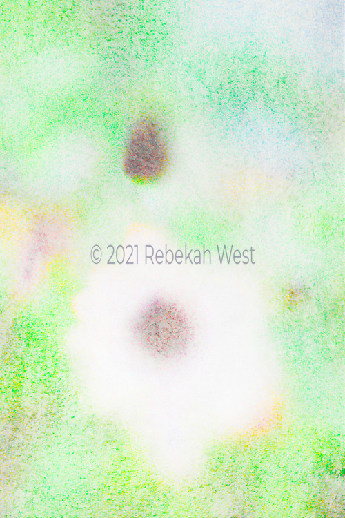 Blurry foggy rainy vivid watercolors with brown centered daisy form down center and a mirror center up center in vertical field, accents in apricot, super soft red violet, greenery under and over layers, greenery, flower art, feminine, high resolution, licensing, iridescent, vertical, 3394 x 5092