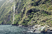 A beautiful waterfall along the fiords, around the corner from Fur Seal Rock, Milford Sound,  in Fiordland, New Zealand