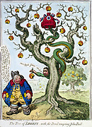 The Tree of Liberty - with the Devil tempting John Bull', James Gillray, 1798. Serpent, tail in Cap of Liberty, face of Charles James Fox, coiled round dying oak, offers damaged apple 'reform' to  John Bull, pockets full of  golden fruit.
