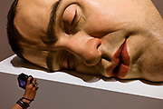 A person takes a photograph of a Ron Mueck sculpture