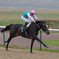 Lingfield 27th November