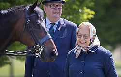 © Licensed to London News Pictures. 10/05/2017. Windsor, UK. Queen Elizabeth II admires a horse at the Royal Windsor Horse Show. The five day equestrian event takes place in the grounds of Windsor Castle. Photo credit: Peter Macdiarmid/LNP