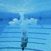 2003 Hurricanes Swimming