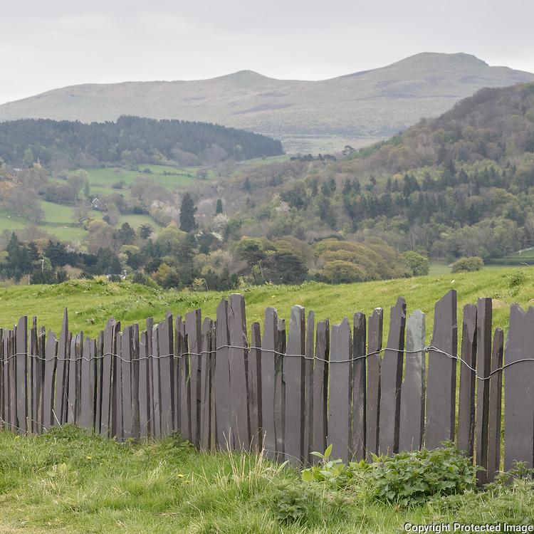 Slate fence near Lavan Sands and the Carneddau mountains, Conwy.