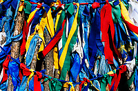 Traditional prayer flags adorn a religious site in northern Mongolia.
