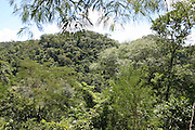 Bonito_MT, Brasil.<br /> <br /> Parque Nacional da Serra da Bodoquena em Bonito, Mato Grosso.<br /> <br /> Serra da Bodoquena National Park in Bonito, Mato Grosso.<br /> <br /> Foto: JOAO MARCOS ROSA / NITRO