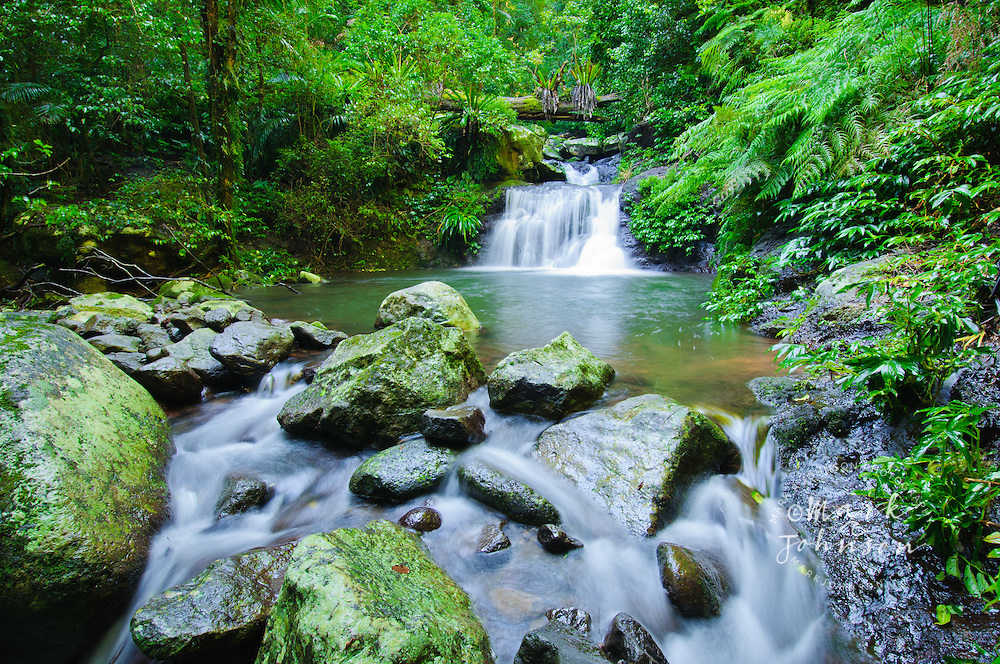 Waterfall, Lamington National Park, Gold Coast hinterland, Queensland, Australia