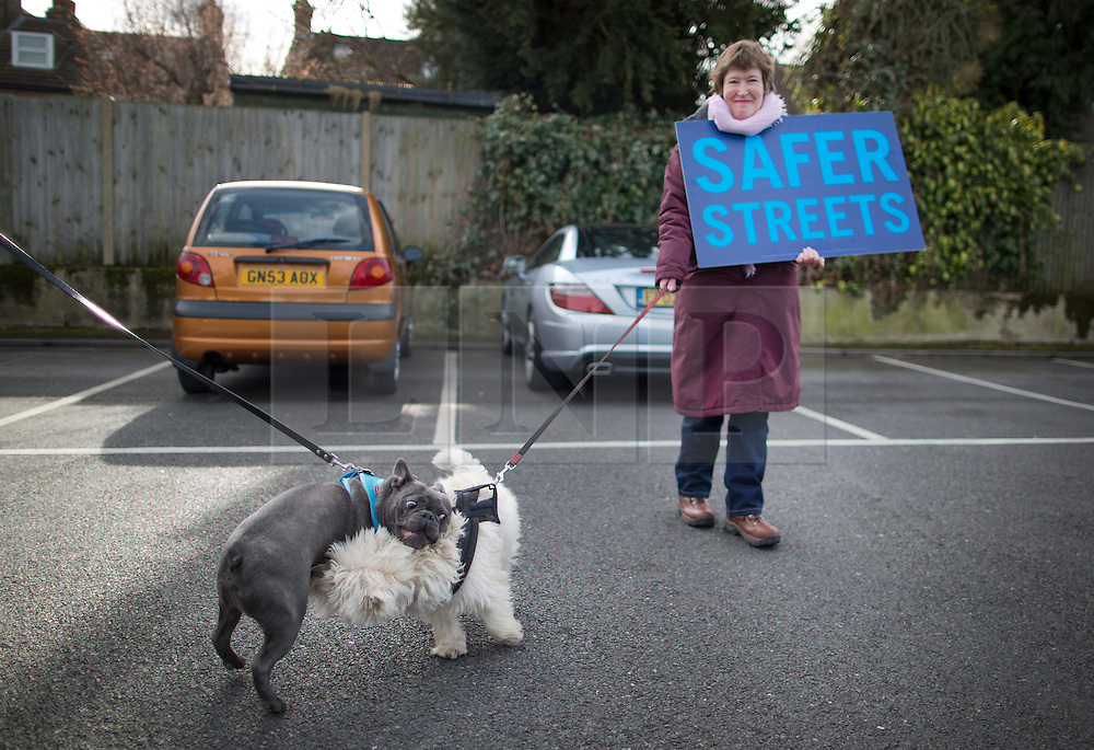 © Licensed to London News Pictures. 03/03/2016. London, UK.  A supporter of Conservative candidate for Mayor Zac Goldsmith stands with her dog as it fights another on the campaign trail in Sidcup. Photo credit: Peter Macdiarmid/LNP
