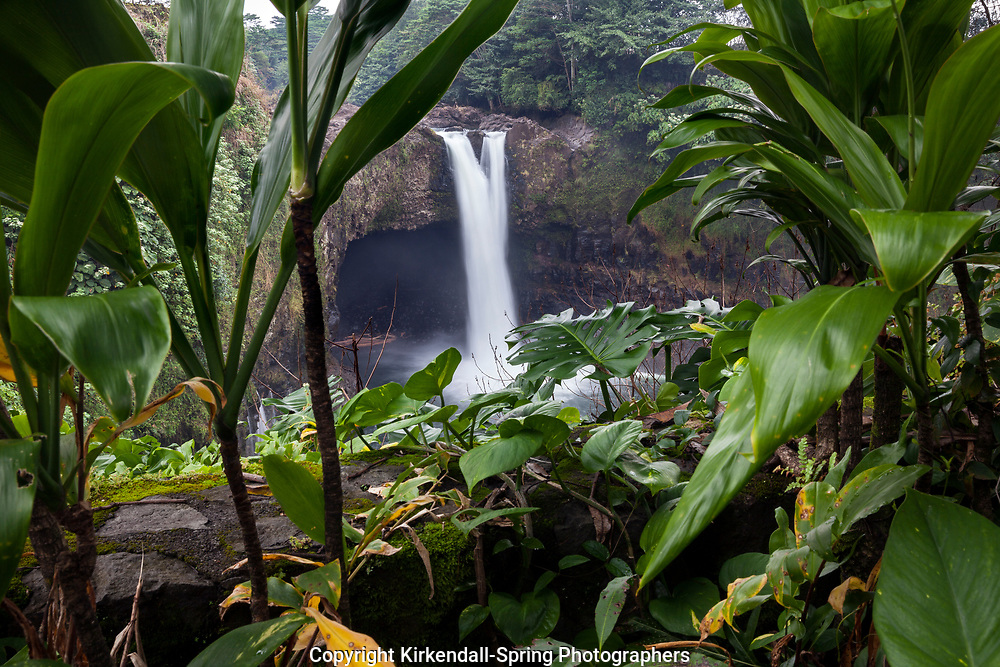HI00319-00...HAWAI'I - Rainbow Falls on the island of Hawai'i.