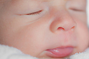 Face portrait of a 27-day old sleeping newborn