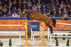 125 - <br /> KWPN Stallion Selection - 's Hertogenbosch 2014<br /> © Dirk Caremans