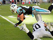 CHARLOTTE, NC - NOVEMBER 7:  Wide receiver Ricky Proehl #81 of the Carolina Panthers gets upended by rookie safety Stuart Schweigert #30 on a pass reception against the Oakland Raiders at Bank of America Stadium on November 7, 2004 in Charlotte, North Carolina. The Raiders defeated the Panthers 27-24. ©Paul Anthony Spinelli  *** Local Caption *** Ricky Proehl;Stuart Schweigert