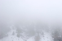 Winter Snow Storm, Angeles National Forest, Mount Baldy Ski Village, California
