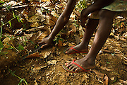 Koffi Affoue Ange, 10, uses a machete to clear dry leaves under cocoa trees on her family's cocoa plantation near the village of Soumaorodougou, Bas-Sassandra region, Cote d'Ivoire on Saturday March 3, 2012. She goes to school but help with farming chores on weekends.