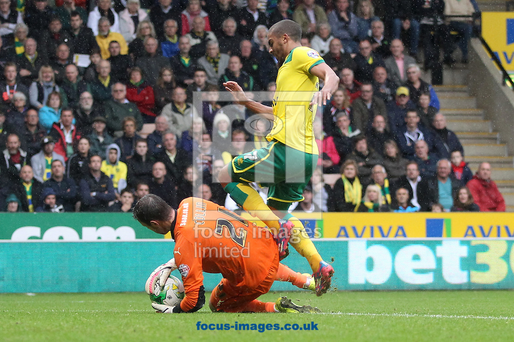 Adam Collin of Rotherham United collects the ball safely ahead of Lewis Grabban of Norwich who goes over looking for a penalty during the Sky Bet Championship match at Carrow Road, Norwich<br /> Picture by Paul Chesterton/Focus Images Ltd +44 7904 640267<br /> 04/10/2014