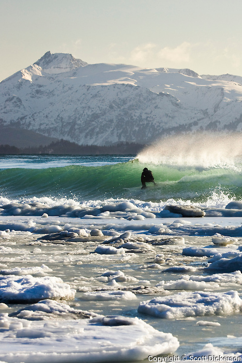 Alaskan surfer Gart Curtis rides a wave with snow, slush, and ice packed against the beach during a cold winter surf session in Homer, Alaska. The snowy Kenai mountain range rises from Kachemak Bay in the background.