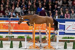 154, Mix P<br /> KWPN hengstenkeuring - 's Hertogenbosch 2020<br /> © Hippo Foto - Dirk Caremans<br />  29/01/2020