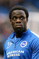 Elvis Manu, Brighton and Hove Albion