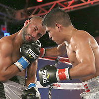 Ricardo Rodriguez (R) lands a right hook to the head of Jonathan Vidal during a Telemundo Boxeo boxing match at the A La Carte Pavilion on Friday,  March 13, 2015 in Tampa, Florida.  Rodriguez won the bout. (AP Photo/Alex Menendez)