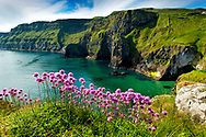 Photo: Chris Hill, Carrick-a-Rede, County Antrim