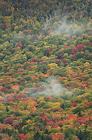 Fall Foliage White Mountains, New Hampshire