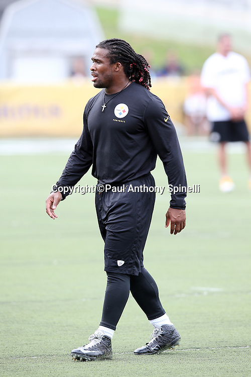 Pittsburgh Steelers running back DeAngelo Williams (34) looks on as he warms up before the 2015 NFL Pro Football Hall of Fame preseason football game against the Minnesota Vikings on Sunday, Aug. 9, 2015 in Canton, Ohio. The Vikings won the game 14-3. (©Paul Anthony Spinelli)