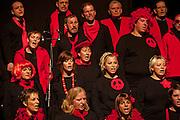 Choeur mixte de La Roche lors du concert annuel; der gemsichte Chor von La Roche bei Jahreskonzert 2010.