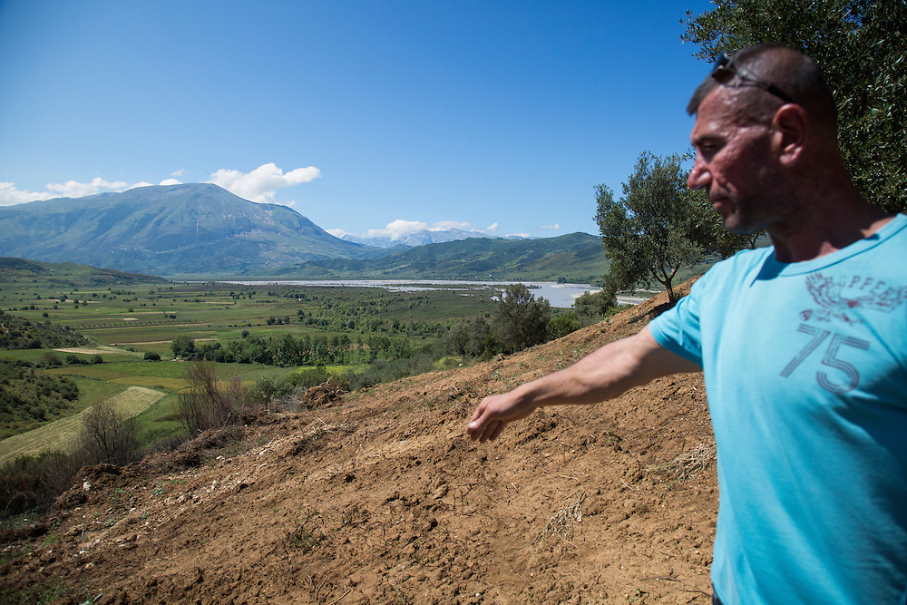 Taulant Hazizaj's cleared a lower plot of land on the edge  of a section of his 3,800 olive trees above the Vjosa River. If the Pocem dam is built this area will be flooded, he says. He has stopped planting until he has more information.