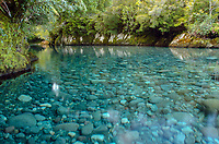 Clear trout waters of the Huequi River during the Patagonia Expedition 2013 in Southern Chile.