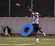 Carolina Panthers linebacker Andre Smith(57) goes up to catch a pass during minicamp at Bank of America Stadium, Thursday, June 13, 2019, in Charlotte, NC. (Brian Villanueva/Image of Sport)