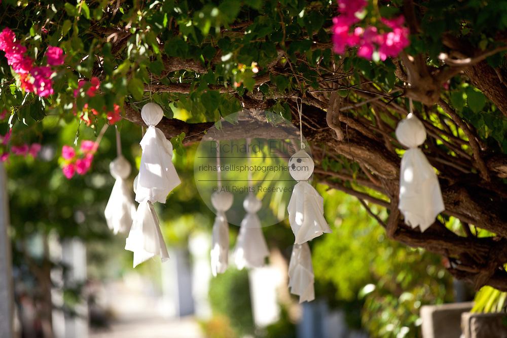 Halloween ghosts decorate a bougainvillea bush in Key West, Florida