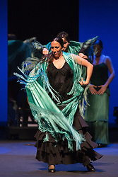 © Licensed to London News Pictures. 16/02/2016. London, UK. Ballet Flamenco Sara Baras perform the piece Soleá por bulería of from Voces, Suite Flamenca at the Flamenco Festival London 2016 at Sadler's Wells Theatre. The Festival runs from 16 to 28 February 2016. Photo credit : Bettina Strenske/LNP