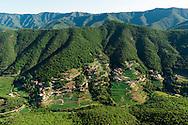 France, Languedoc Roussillon, Gard, Cévennes, massif de l'Aigoual, vallée de Taleyrac, culture d'oignons doux des Cévennes, vue aérienne