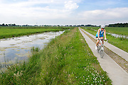 In Groenekan rijdt een vrouw op een racefiets door de polder. Van oorsprong een sport die vooral door mannen werd beoefend, doen steeds meer vrouwen aan wielrennen.<br /> <br /> In Groenekan a man is cycling on a road bike.