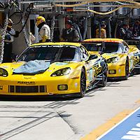 #74 Corvette C6.R ZR1, drivers: Gavin, Milner, Westbrook, #73, drivers: Garcia, Magnussen, Taylor, Corvette Racing, USA,  Le Mans 24H 2013