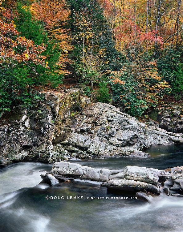 Rushing Water And Fall Colors, Great Smoky Mountains National Park, Tennessee
