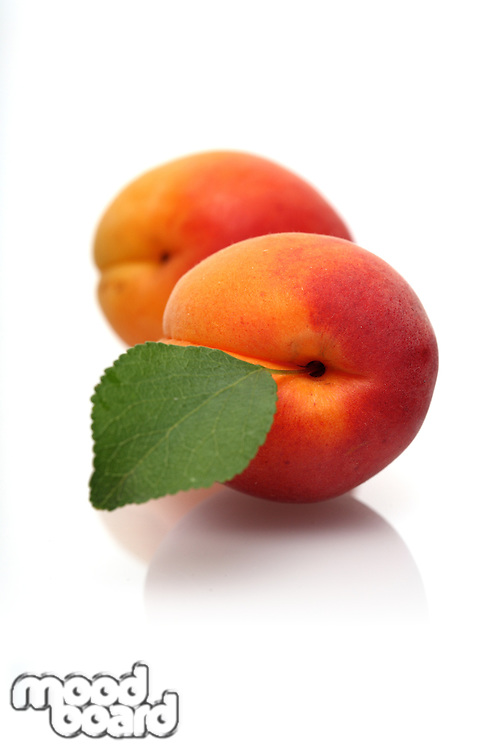 Apricots on white background - close-up
