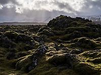 Skúlatúnshraun Lava Field just south of Hafnarfjörður. Dramatic clouds and light. Iceland.