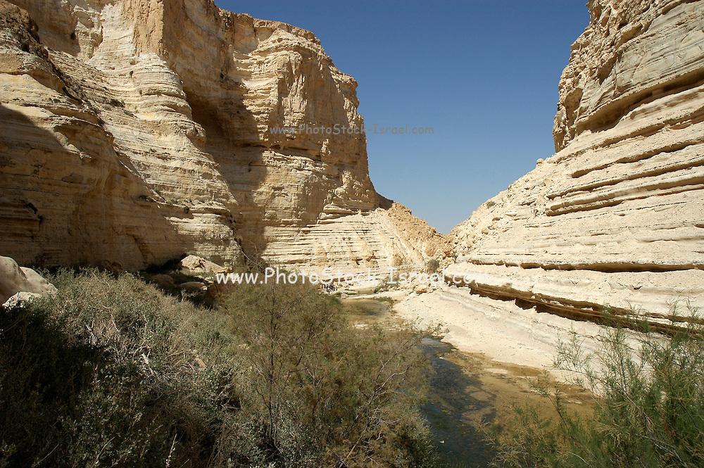 Israel, Negev, Ein Avdat