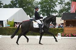 Burger Hermann, GER, Lightning C<br /> World Championship Young Dressage Horses <br /> Ermelo 2016<br /> © Hippo Foto - Leanjo De Koster<br /> 29/07/16