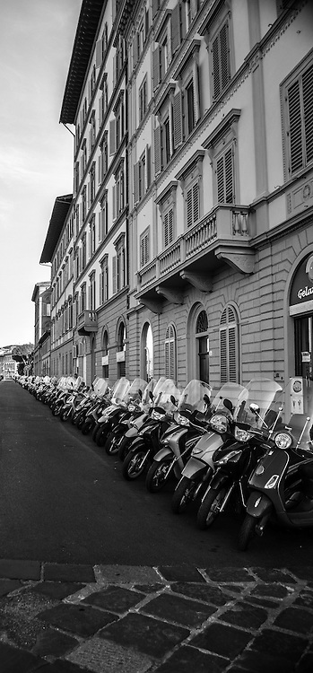 Endless row of scooters in Florence, Italy