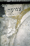 During the time I have spent in Poland I travelled to various Jewish cemeteries searching for engraved hebrew words that remained on tombstones, testimony of the life and love people shared here before World War II.