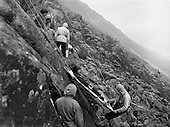 1957 - Mountaineering Club on outing at Glendalough, Co. Wicklow